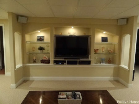 Basement - Entertainment Center and Shelves
