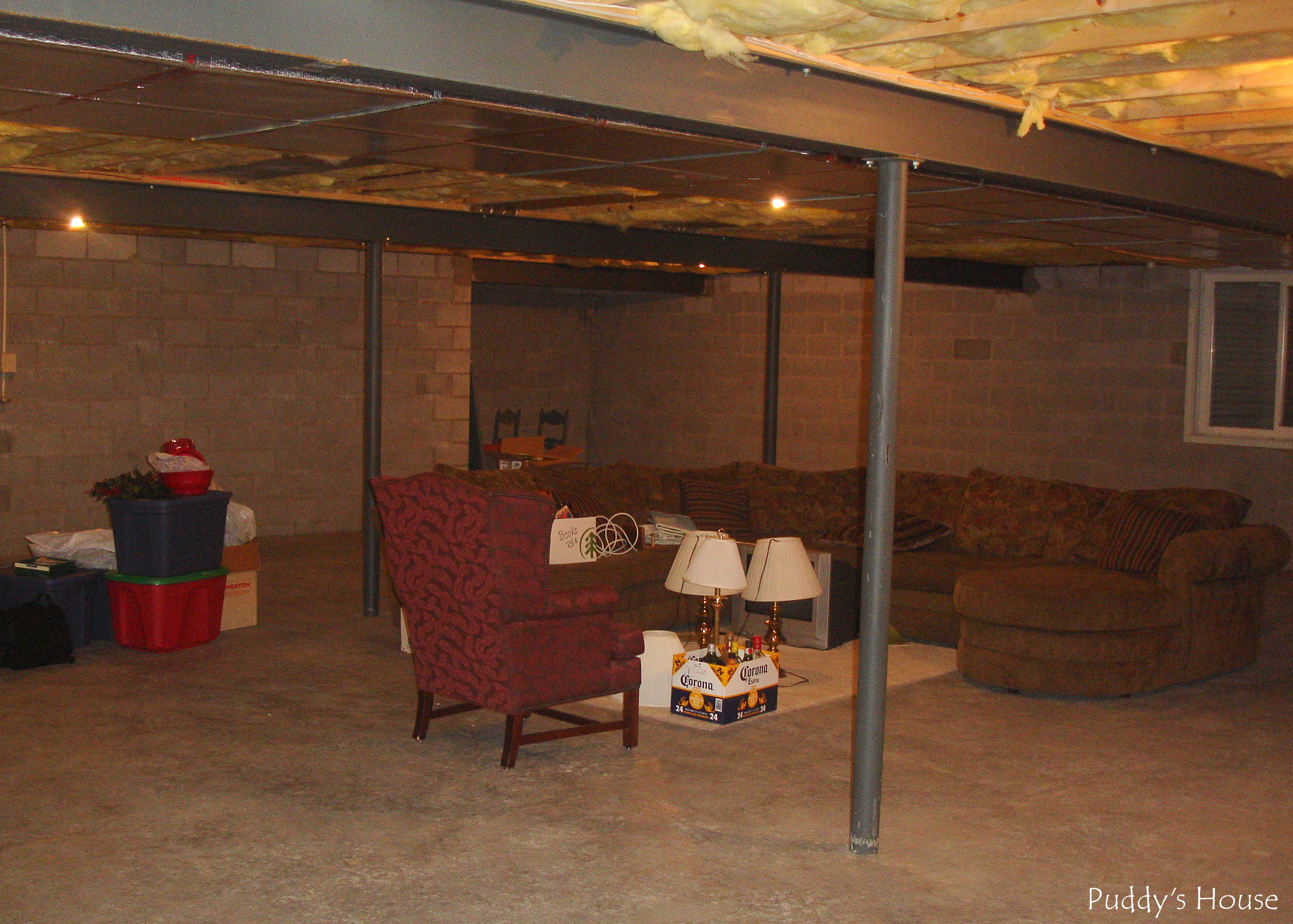 Our basement retreat puddy 39 s house - Finish my basement ideas ...