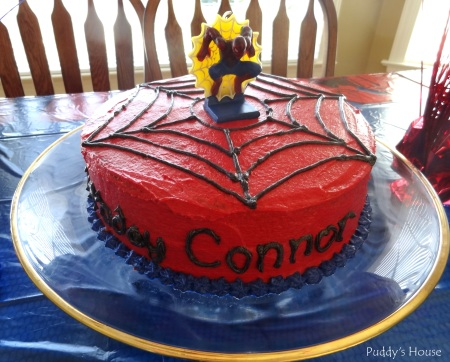 Spiderman Birthday - Connor's cake