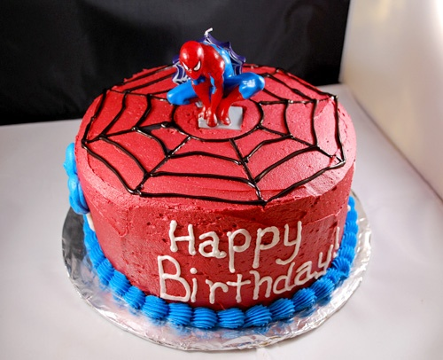 Spiderman Birthday Party   Puddy s House