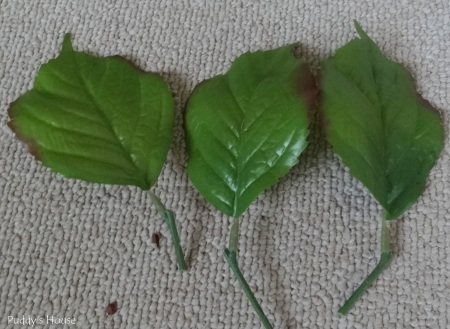 Spring Wreath - individual leaves