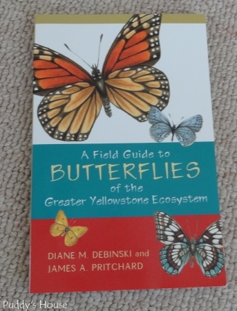Craft Room - Butterfly book for artwork