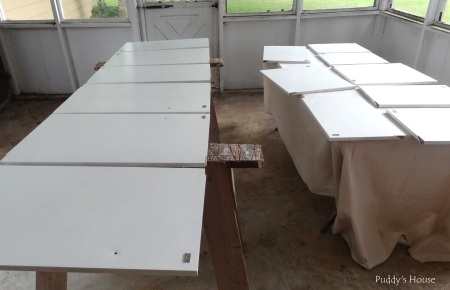Kitchen Cabinets - painted tops inside