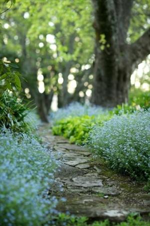 natural landscaping - 72cfa8afe8e0f9ff1d9b620c0e7d137d