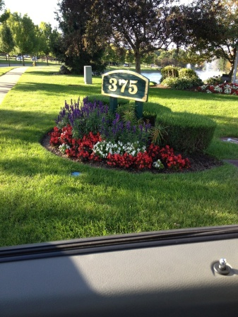 sculpted landscaping - c25778f6547adb3f1c60dcd2f11ddd9f